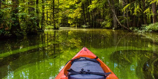 DelaVenture: Trap Pond Kayaking
