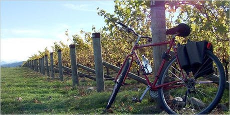 2019 Wine About Your Bike (featuring Windy Ridge Concert) tickets