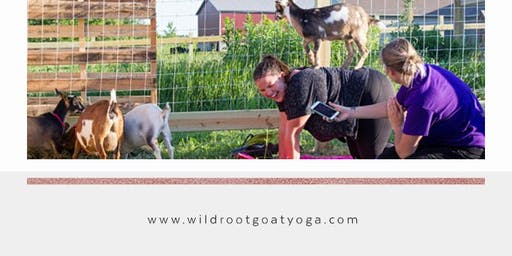 1 Year Anniversary - Goat Yoga July 7th