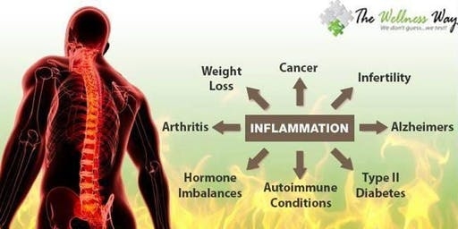 FREE Workshop - The Wellness Way Approach to Inflammation