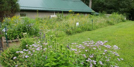 Grow Your Own Meadow - Talk and Walk tickets