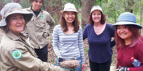 Introduction to Bushcare and WH&S workshop tickets