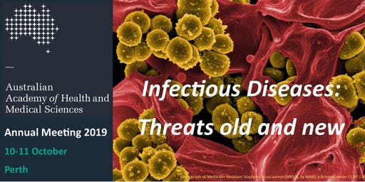 AAHMS Annual Meeting 2019 (Fellows and Associate Members)