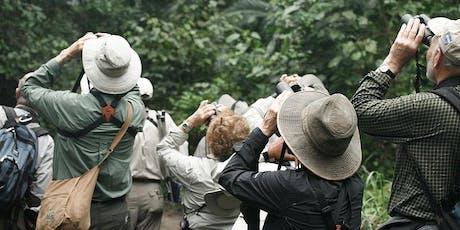 Maroochy Wetlands Sanctuary Eco-Hunt: Guided Bird Walk tickets