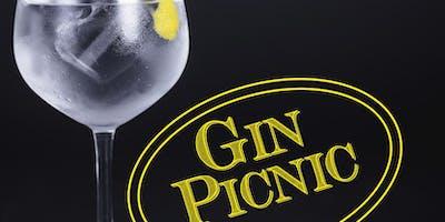 The Gin Picnic at Himley Hall