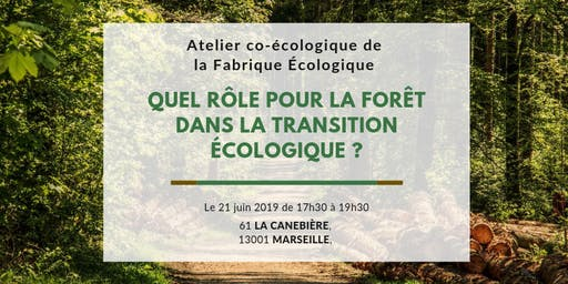 Atelier co-Ecologique à Marseille - La forêt dans la transition écologique