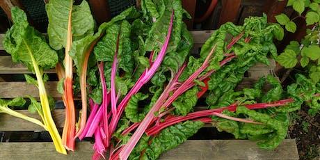 Growing autumn and winter veg tickets