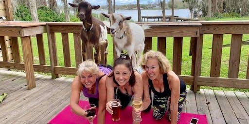 Goat Yoga plus free drink! 6/29/19