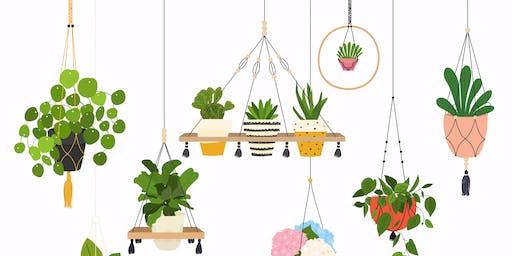 Macrame' Plant Hanger For Beginner