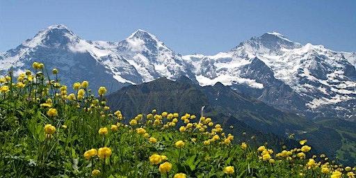 The Clear Way Switzerland -  Spring Retreat 2020