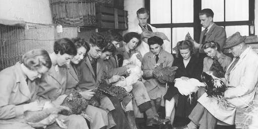 Poultry Mania Past and Present at Harper Adams University