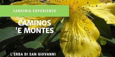 Caminos 'e Montes.. Su Vrore 'e Santu Juvanne - ORGOSOLO