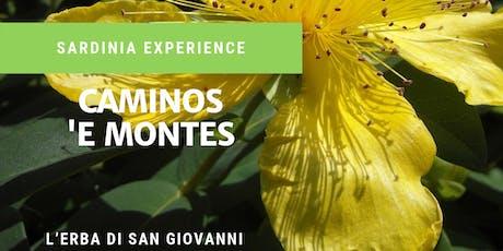 Caminos 'e Montes.. Su Vrore 'e Santu Juvanne - ORGOSOLO biglietti