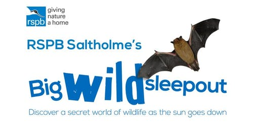 RSPB Saltholme's Big Wild Sleepout