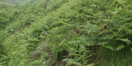 Bracken Control Without Chemicals tickets