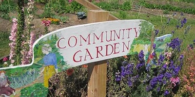 Ferndale Community Gardening Project