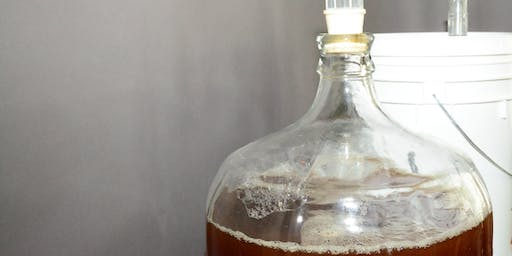 Basics of Brewers Yeast for Homebrewers (webcast)