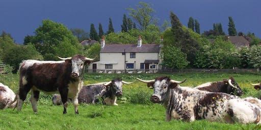 Evening Walks: Aylestone Meadows