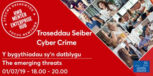 Cyber Crime | Troseddau Seiber