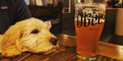 Seattle: SeaCats & Dogs at Obec Brewing
