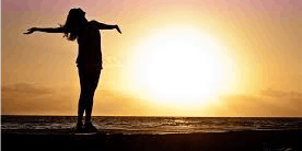 Sunshine in the Shadows - Finding Joy in the Center of Disappointment