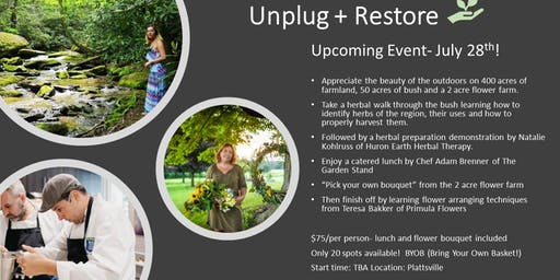 Unplug + Restore