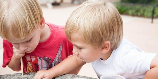 Explore Dorothea Dix Park - A Shell for a Home!