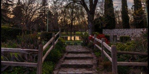Summer Mini Family Sessions ($100)- Sacramento