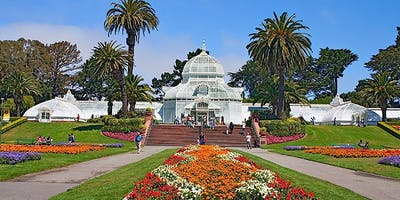 Sound Meditation at the Conservatory of Flowers (July)