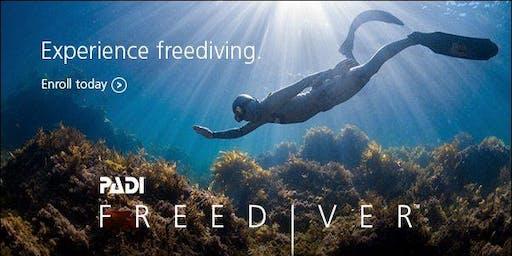 PADI Freediving Class July