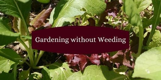 """""""Gardening without Weeding"""" plus Plant Sale and Swap"""