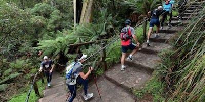 1000 steps trip