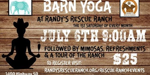 Barn Yoga at Randy's Rescue Ranch