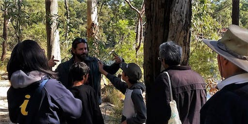 Aboriginal Cultural Activity- Culture Camp