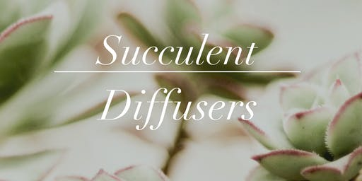 Create Your Own Succulent Diffuser with Essential Oils