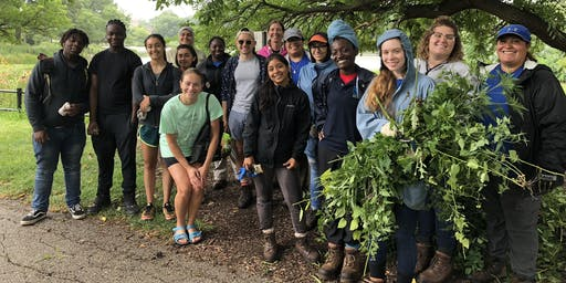 Volunteer in Humboldt Park:  Nature Scavenger Hunt + Habitat Restoration