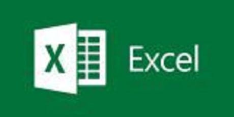 Statistical Data Analysis using Microsoft Excel tickets