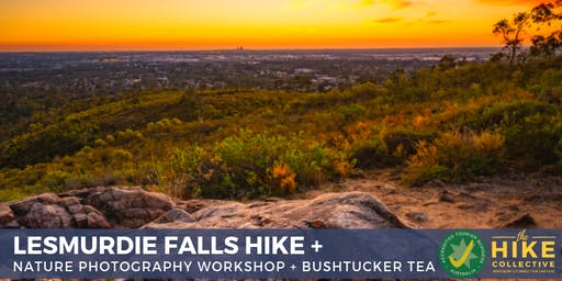 Lesmurdie Falls Hike and Nature Photography Workshop + Bushtucker Tea