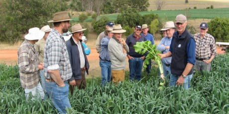 Healthy Soils and Compost Field Day     tickets