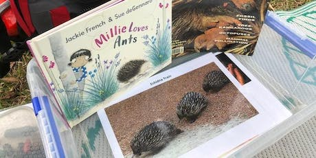 Lane Cove Bush Kids - Echidna Antics tickets