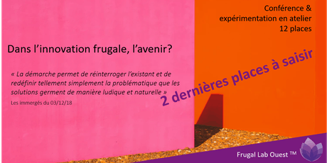 Immersion dans l'innovation frugale 25 Juin 2019 billets