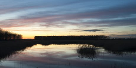Behind the Scenes Walking Safari at Lakenheath Fen tickets