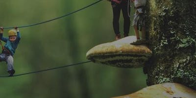 Torre Boldone Adventure Park: All-Day Access