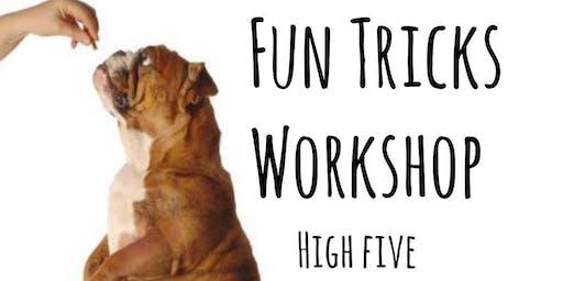 Fun Trick's Workshop @ The DSPCA