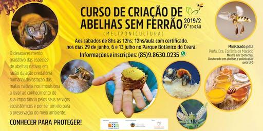 Curso de Criação de abelhas sem ferrão no Parque Estadual Botânico do Ceará.