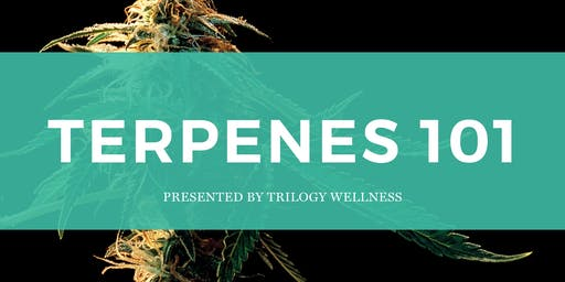 Terpenes 101 June Workshop