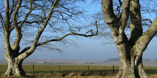 On the Trail of Beowulf - Stonehenge Landscape