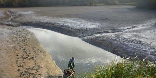 Vidange et pêche d'étang