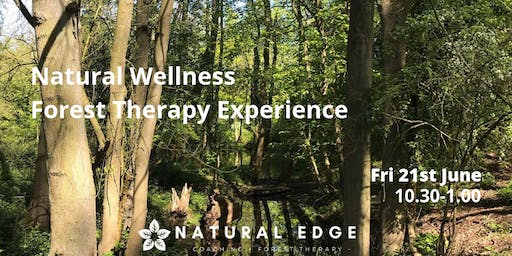 Forest Therapy Experience - Walkern Hall Woods