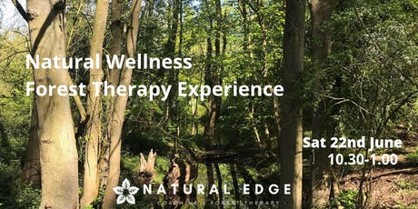 Forest Therapy Experience - Walkern Hall Woods tickets